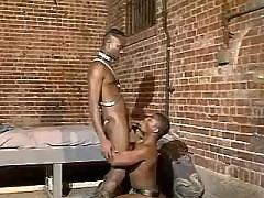 Black gay guy amplifies for mammoth schlong