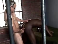 Hung have a fun horses black faggots very