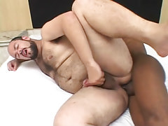 Chubby unshaved chap bonked by brown gay guy