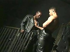 Black gentleman getting nastily pounded