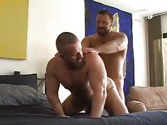 Lusty bear man-lovers hard fuck in doggy style
