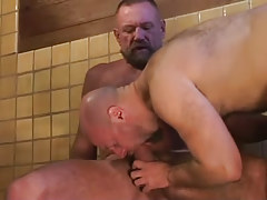 Bear dilf swallows tough dick of mellow homosexual