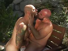 Bear homosexual guys kissing in nature