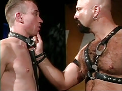 Bear parent in leather spoils poor male