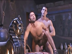 Muscle Arabian faggots intense fuck in doggy style