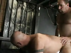 Mature hairy gay guys tough fuck in doggy style